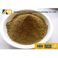 Best Nutritious Cattle Feed Concentrate 65% High Protein Content Slight Smell And Taste wholesale