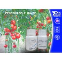 Best Pale Yellow Liquid Systemic Fungicide For Roses , Pome Fruit , Stone Fruit wholesale