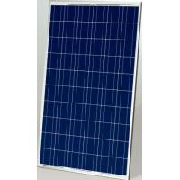 Best Poly 240W Solar Panel wholesale