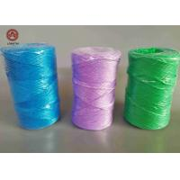 Best Colorful Polypropylene Tying Twine 1.5KG Per Spool For Farm And Greenhouse wholesale