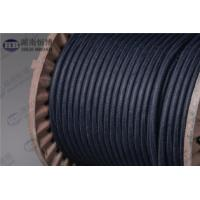 Best MMO/Ti Flexible Anode And Conductive Polymer Anode Zinc Anode For Tank Bottoms wholesale