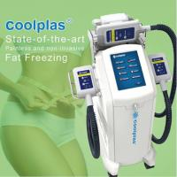 Best No Downtime Cryolipolysis Fat Freezing Machine Fat Loss Machines 3 Handles wholesale
