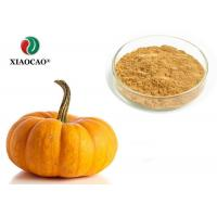 Best Food Supplement Organic Herbal Extracts Nutritional Organic Pumpkin Powder wholesale