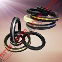Buy cheap SPM FMC WECO Hammer Union Seal Viton lip seal brass back from wholesalers