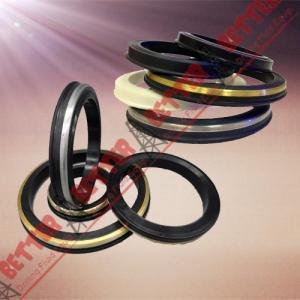 Best SPM FMC WECO Hammer Union Seal Viton lip seal brass back wholesale
