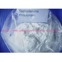 Best Bodybuilding Testosterone Steroid white Powder/ Injectable Anabolic Steroids Testosterone Propionate Test P CAS: 57-85-2 wholesale