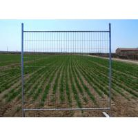 Best Standard Builders Temporary Fencing 1800mm Height X 2200mm Width OF 32 Pipes wholesale
