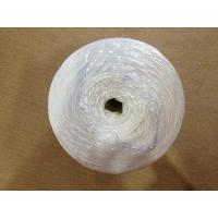 Best Split Film Twisted String PP  Twine for Greenhouse / 6000D-9000D PP Packing Rope wholesale