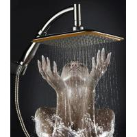 Best China Ningbo cixi factory 9-inch handheld-head shower with two functions one as hand shower and other head shower new wholesale