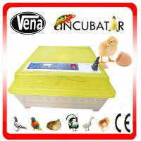 Best Full automatic digital small incubator for parrot egg hatching VA-48 wholesale