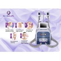China Weight Loss Salon Equipment Portable Fat Freezing Cryotherapy Cryolipolysis Machine on sale