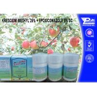 Best KRESOXIM-METHYL 25% + EPOXICONAZOLE 5% SC Pesticide Mixture 143390-89-0, 106325-08-0 wholesale