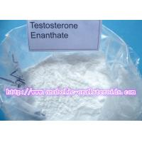 Best White Powerful Testosterone Steroid Hormone Testosterone Enanthate for Bodybuilding/Test E CAS 315-37-7 wholesale