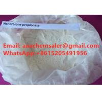 China Nandrolone Propionate Nandrolone Steroid for Muscle Building / muscle Supplement whatsapp:+8615205491956 on sale