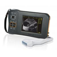 Best Monochrome Display Veterinary Ultrasound Scanner L60 With 32 Digital Channels wholesale
