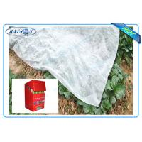 Best Degradable Weed Control Mat Made from Black or White Anti-UV PP Non Woven Fabric wholesale