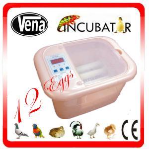 Best Full automatic 12 Egg Incubator for quail eggs wholesale