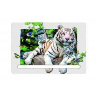 Best 0.6mm Pet 5d Attractive White Tiger 7x11cm Magnets With Notepad  For Refrigerator wholesale