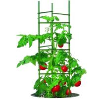 CobraCo, versatile, stake arms, Sturdy Stakes, Ultomato, tomato, plants, support, stems, climbing