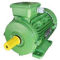Best Squirrel Cage 3 Phase 4 Pole Induction Ac Motor 0.75kw For Woodworking Machinery wholesale