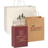 China Logo Custom Printed Paper Bags , Reusable Paper Shopping Bag with Handle on sale