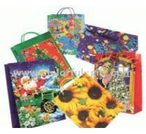 Paper bag-2