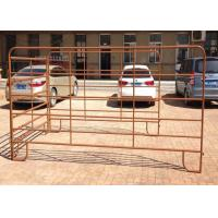 Best Water Dust Proof Cattle Yard Panels With Welded Top Caps And Foot Plates wholesale