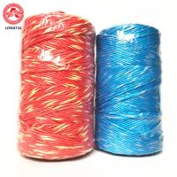 Best 5mm 2 Ply Twisted Colorful Polypropylene Baling Twine With High Breaking Strength wholesale