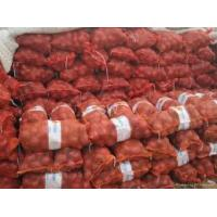 Best Red onion for sale wholesale