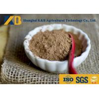 Best Nature Smell Brown Rice Protein Supplement Ease Digestible High Biological Value wholesale