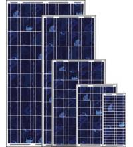 Best Solar Panel (100W) wholesale