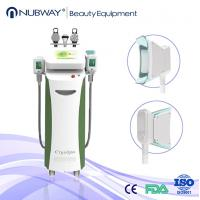 Best Vertical Non invasive Vacuum Cryolipolysis Fat Freeze Machine with 5 Handpieces wholesale