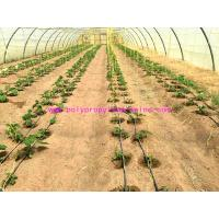 Best 1g/m Stable Agricultural Tomato Tying Twine High Tenacity Different Colored wholesale