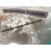 Best Healthy Drostanolone Steroid Dehydroepiandrosterone DHEA Hormone Supplement Hair Growth CAS 53-43-0 wholesale