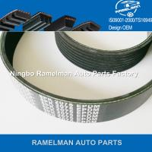 Best ramelman brand auto parts original quality fan belt pk belt poly v belt for car toyota oem 90916-T2006/7PK1516 wholesale