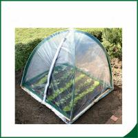 Best PVC coated Garden tunnel greenhouse Home Garden Mini Greenhouse Warm Houses For Growing Trees wholesale