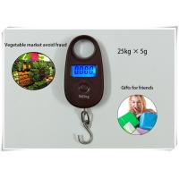 Best 25kg / 5g Home Electronic Scale Sound Indication With Lock Function And Cell Button wholesale