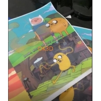 Best 3D LENTICULAR soft printing picture flexible 3d flip zoom morph motion animation lenticular printing service wholesale