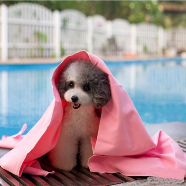 Cheap 66*43 large pet bath towel dog bath towel synthetic chamois PVA towel Clean  pet towel for sale