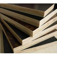 China 4*8feet cheap film faced laminated plywood in china for struction and building / phenolic  / WBPpoplar and birch board on sale
