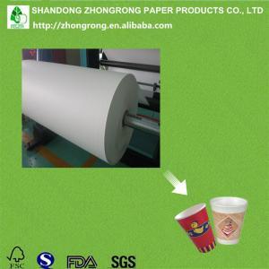 Best waterproof PE coated cup paper board wholesale