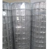 """Best Hot-dipped Galvanized Welded Wire Mesh   3""""X2"""",2.7mm,1.2-1.8m wholesale"""