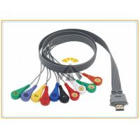 Best 10 Leads Holter Ecg Cables And Leadwires 0.9 Meter Length Biox Compatible wholesale
