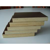 film faced plywood/Cheap price construction playwood / high quality marine plywood price