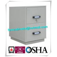 Best Fire Resistant Filing Cabinets , 2 Drawer Fireproof File Cabinets For Documents wholesale