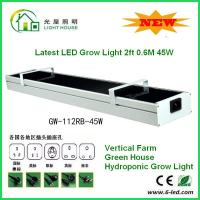 Cheap DC12v 2 Foots Led Grow Lamps For Indoor Plants, Led Weed Grow Lights50-60Hz for sale