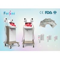 Best Whole body cryotherapy fat freezing cryolipolysis machine sale promotion wholesale