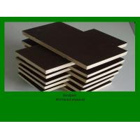 Best shuttering plywood wholesale