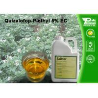 Best Quizalofop-P-Ethyl 5% EC Grass Selective Herbicides Strong Weed Killer wholesale