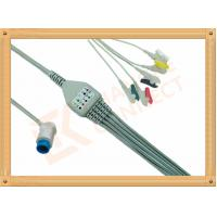 Best Mindray PM5000 Patient 5 Lead Ecg Cable 12 Pin Ecg Lead Wires wholesale